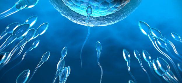 wie spermamenge erhöhen